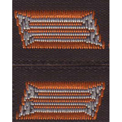 heer enlisted man and nco collar tabs tropical version