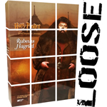 HARRY POTTER - RUBEUS HAGRID STANDARD VERSION (Star Ace)