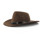 Brown Western hat