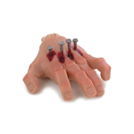 Bloody Caucasian Male Left Hand with Diecast Nails