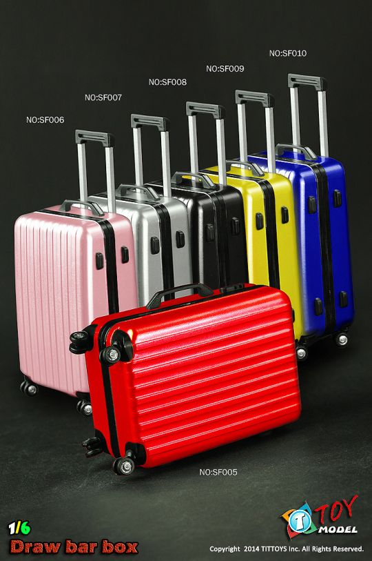 Travel Case (Silver)
