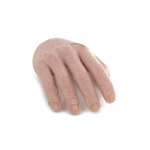 Caucasian Male Right Hand
