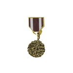 Diecast Meritorious service medal (Gold)