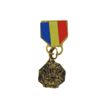 Diecast Navy and Marine corps medal (Gold)
