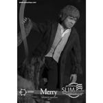 Lord Of The Rings - Merry (Slim Version) Figur