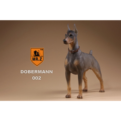 German Doberman Dog (Grey)