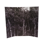 Forest Diorama (Grey)