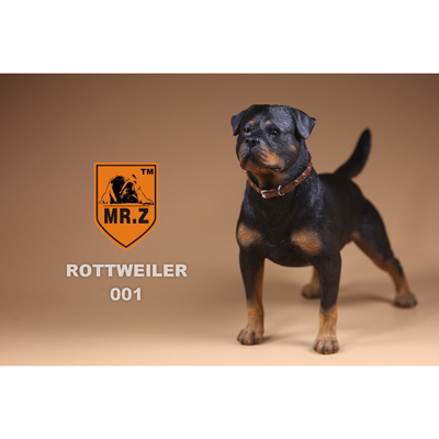 German Rottweiler Dog (Black)