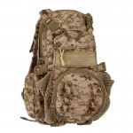 Beaver Tail Assault Pack (AOR1)