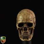 Headsculpt Cannibal Skull