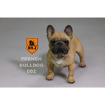 French Bulldog Dog (Brown)