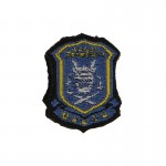 CPLASF Patch (Blue)