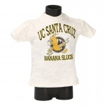 UC Santa Cruz T-shirt (Grey)