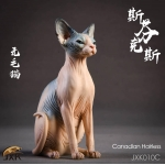 Sphynx Canadian Hairless Cat (Beige)