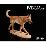 The Loyal Warrior - The Fighting Spirit Malinois Dog (Beige)