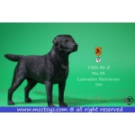 Labrador Retriever Dog (Black)