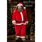 Harry Potter - Rubeus Hagrid Xmas Costume Set