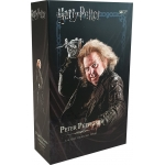 Harry Potter - Wormtail Peter Pettigrew