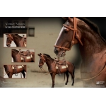 James Dean Horse Accessories Set (Marron)